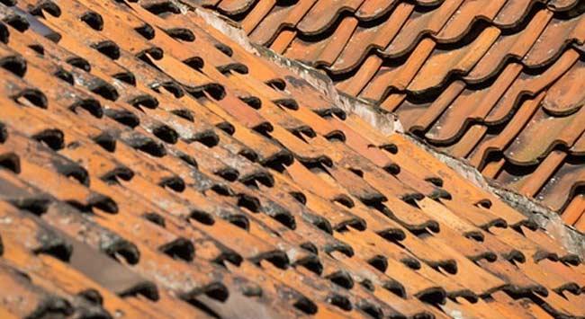 Wat kost het isoleren van een schuin dak gemiddeld?